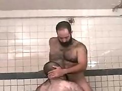 Chubby bear gay sucks hard cock in sauna