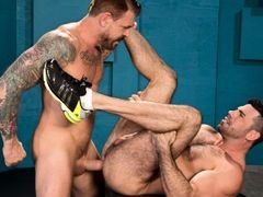 Beefy, bearded Rocco Steele has one of the biggest dicks you've ever seen. He sits back and relaxes as muscled, furry Billy Santoro eagerly servi