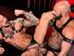Colored ink, muscle, fur and pecker compete for your attention as Drew Sebastian and Dolf Dietrich lie entwined, making out and exploring their massive flesh. Each wears a harness and a leather jock strap with a pecker opening. Drew leans over to suck Dol mature gay