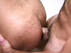 Gay couples lick asses & suck cocks