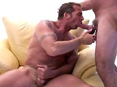 Beefy dudes loves to share some cum by cumswapping in here !