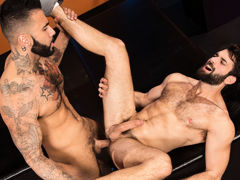 Passionate kissing has furry Tegan Zayne and tatted miserable stud sub Rikk York ready to fuck! Tegan gets down and dirty with a facefucking for Rikk's big, veiny cock. Spit flies as Tegan takes in Rikk's member all the way to the back of his throat. Tega mature gay
