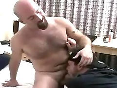 Horny mature stud sucks bear gay